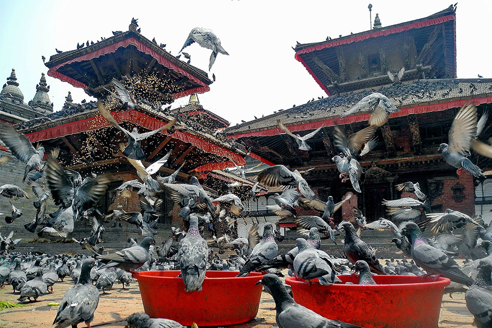 Top 3 festivals in Kathmandu valley